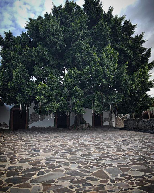 Hacienda Tlacote el Alto