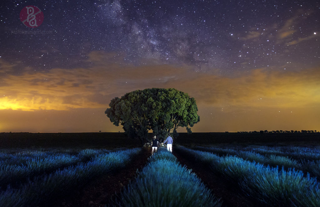 Prebodas por la noche bajo un manto de estrellas. Te gustaría vivir una experiencia así?