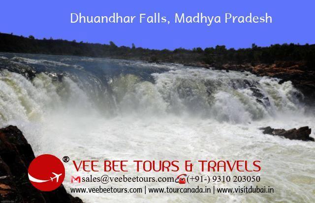 Veebee Tours