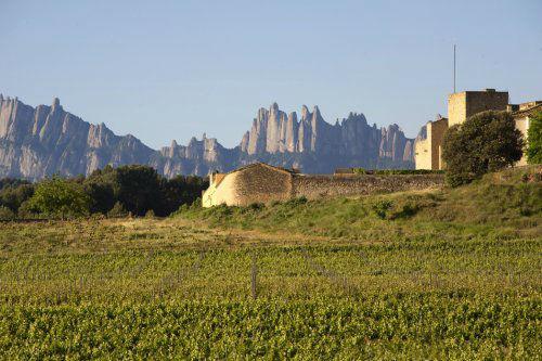 Castillo Oller del Mas