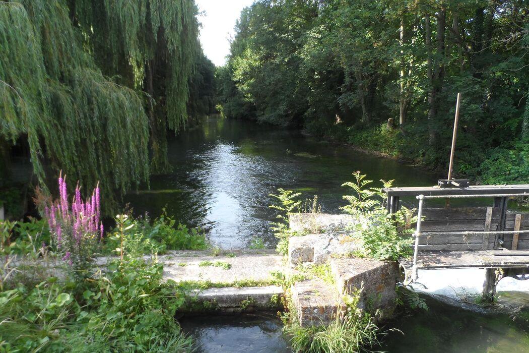 Moulin de Plachy-Buyon