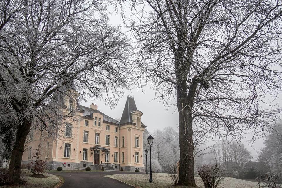Hôtel Château de la Marlière