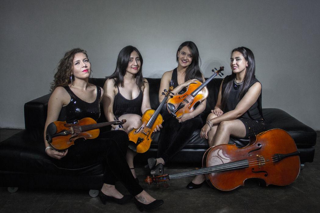 Venus Cuarteto de Cuerdas