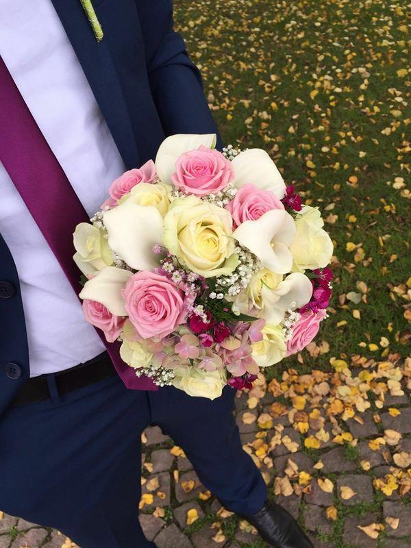 Blumen Dornröschen