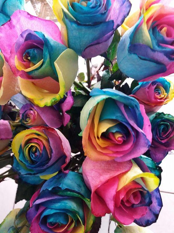 Florería y Decoraciones el Paraíso