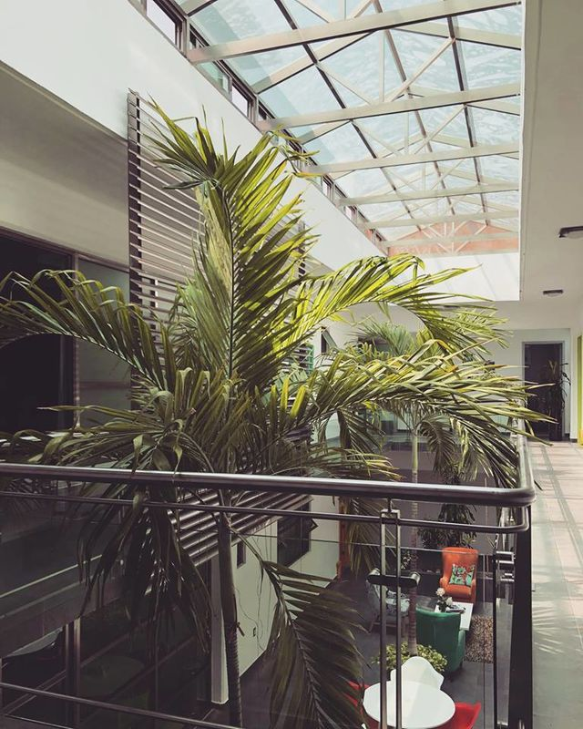 Hotel Boutique Maison Bamboo