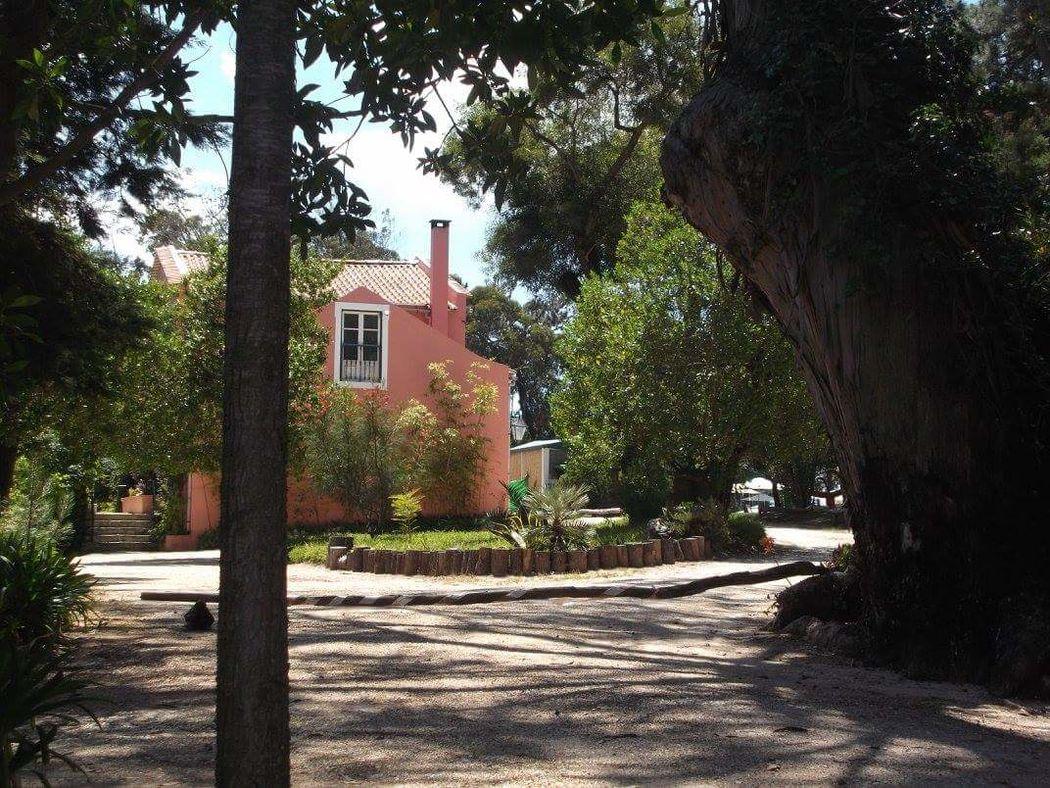 Quinta do Vizo