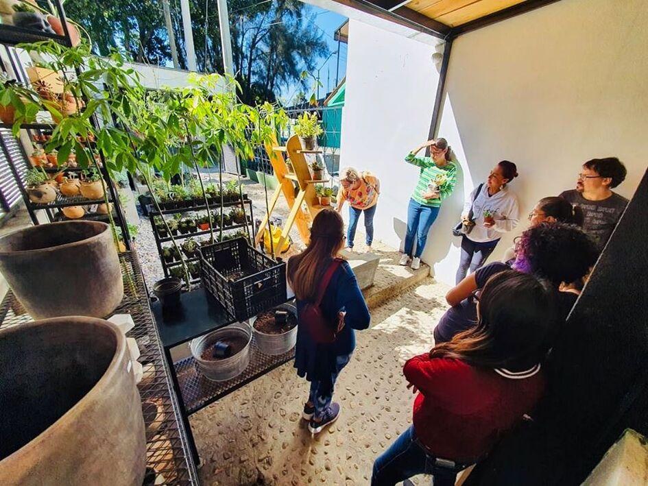 Proyecto Cosecha Eco Sustentable