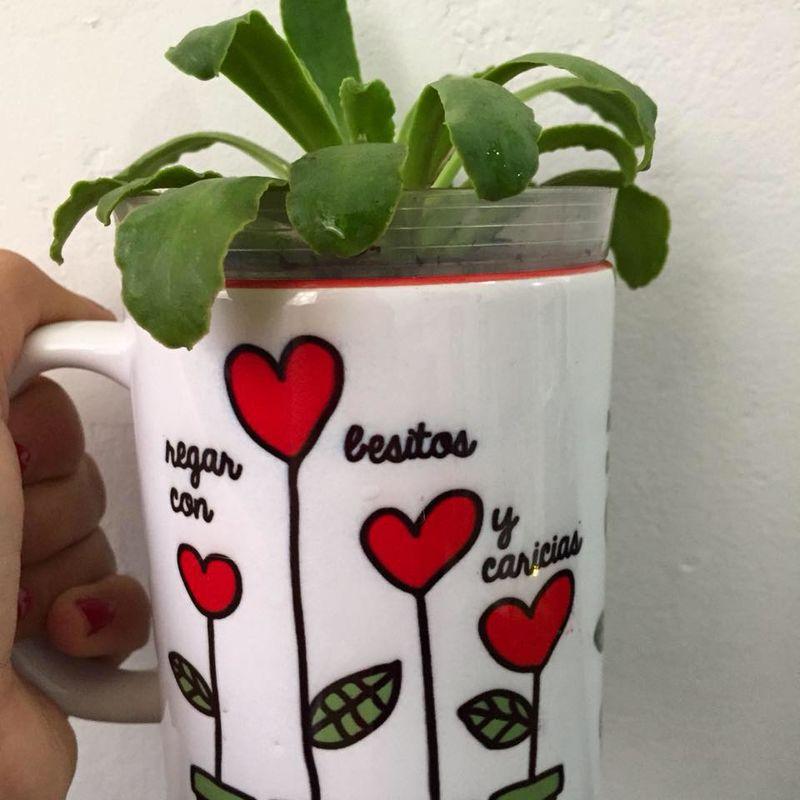 Gift & Love