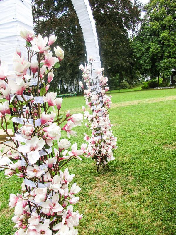 Die Blumenoase Mühldorf am Inn