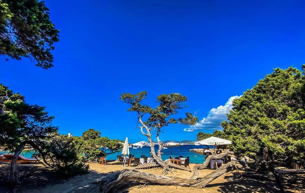 Restaurante CBbC Ibiza