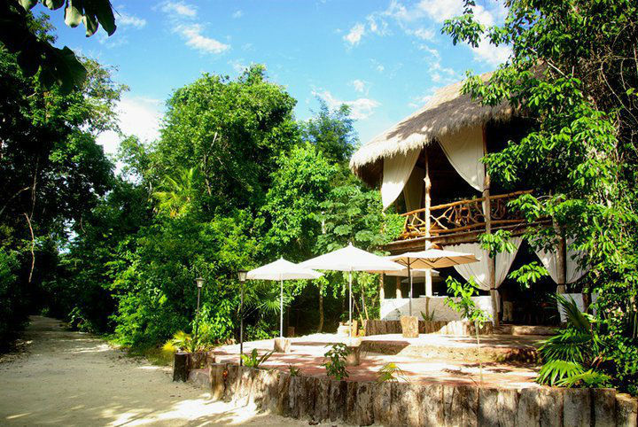 Hotel Jolie Jungle Eco-Lodges