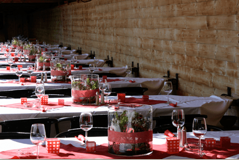 Aschwin Blumen und Dekoration