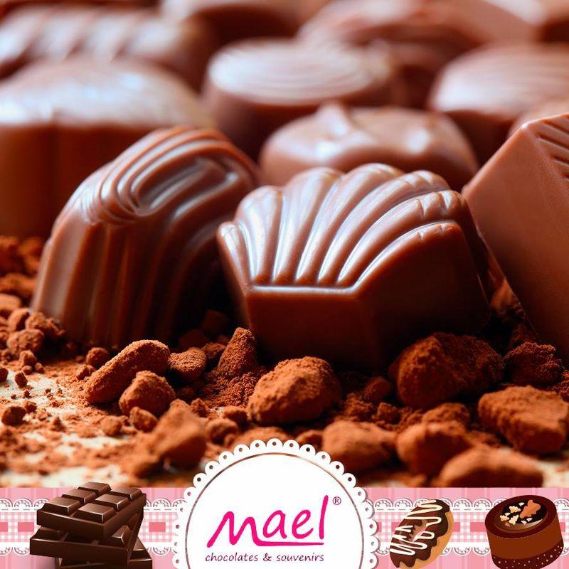 Mael Chocolates y Souvenirs