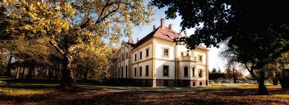 Pałac Borek Strzeliński