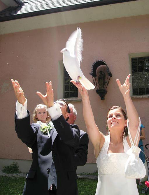 Hochzeitstauben Fleckner