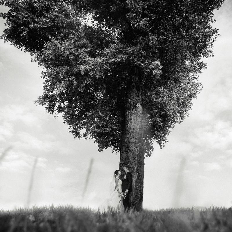 Victor Molodtsov photography