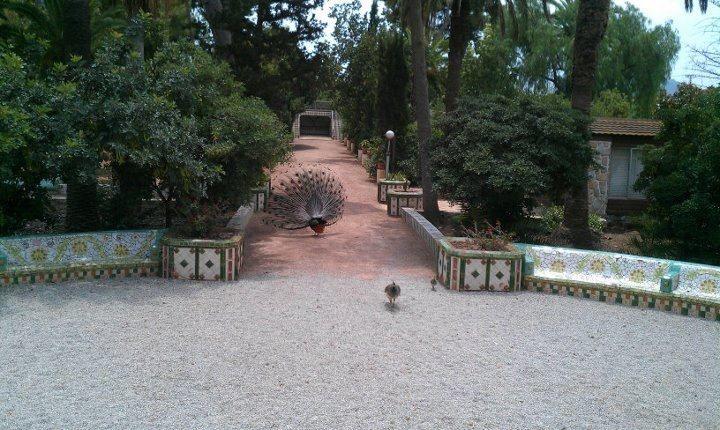 Casa Beltrí