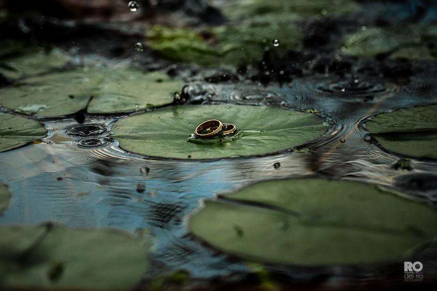 RO del Río Photography