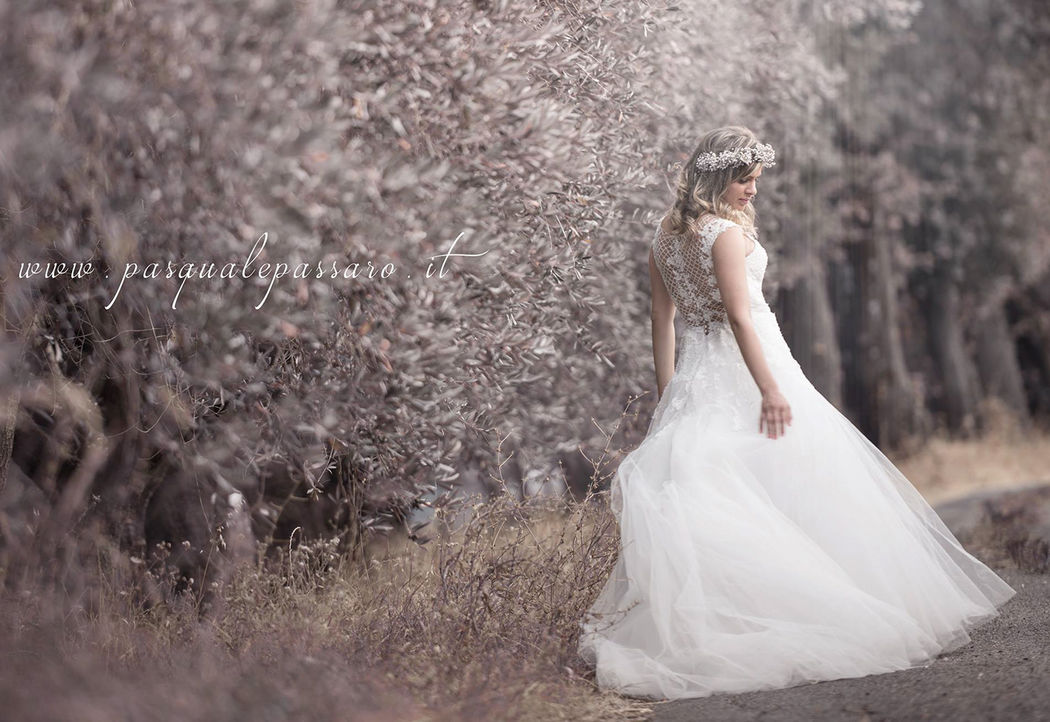 Wedding of Antonio&Emiliana