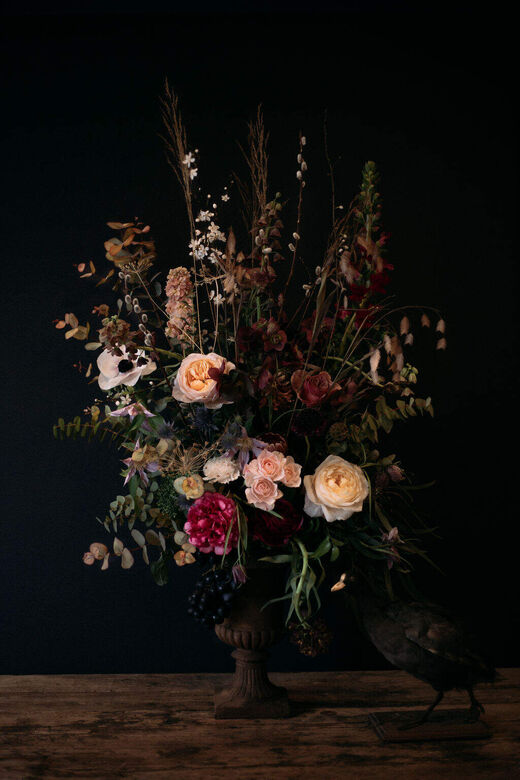 Aude Rose