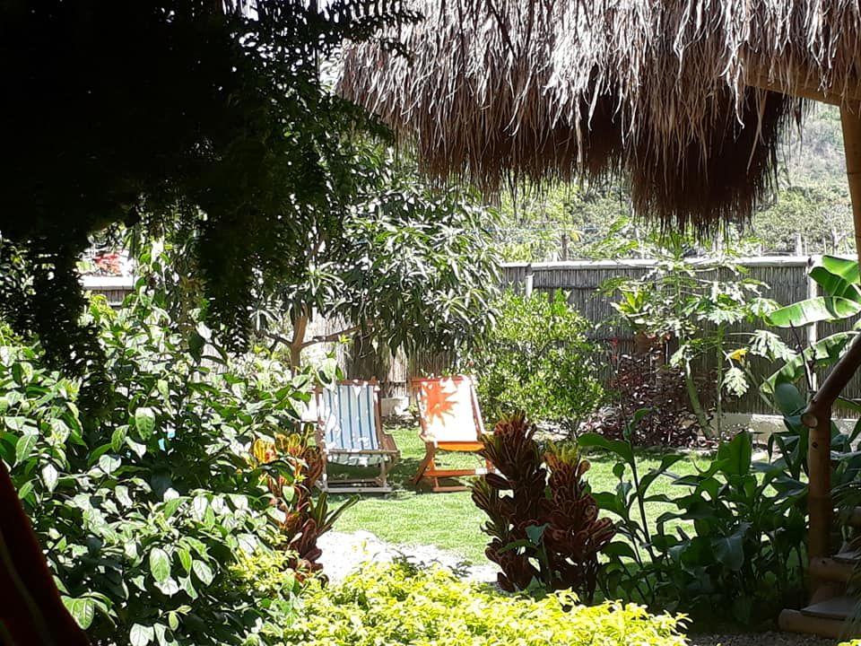 Palomino Hostel Coco Sankala