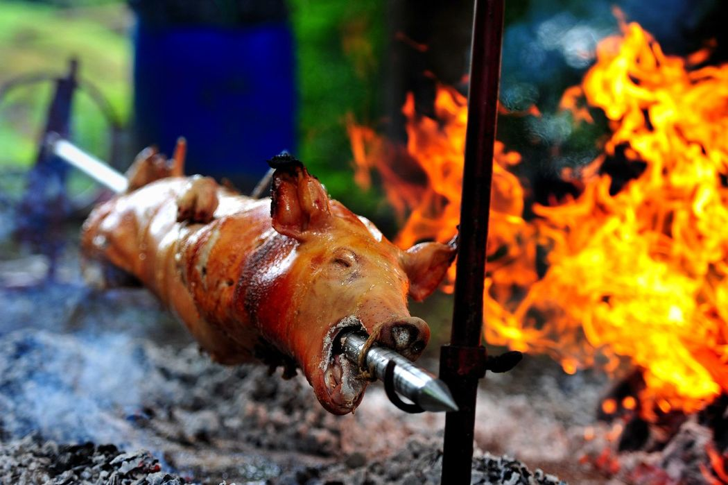 Cochon Grillé - Brunch
