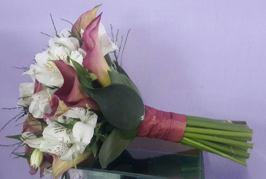 Flora Recanto