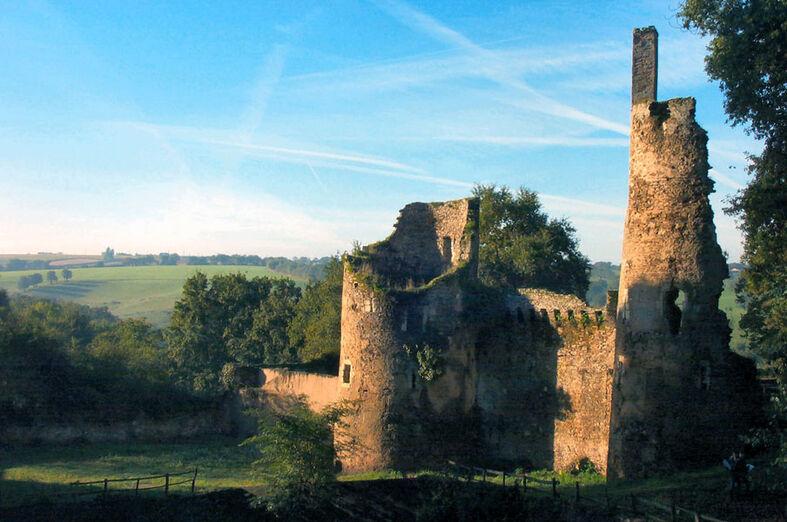 Château de la Turmelière