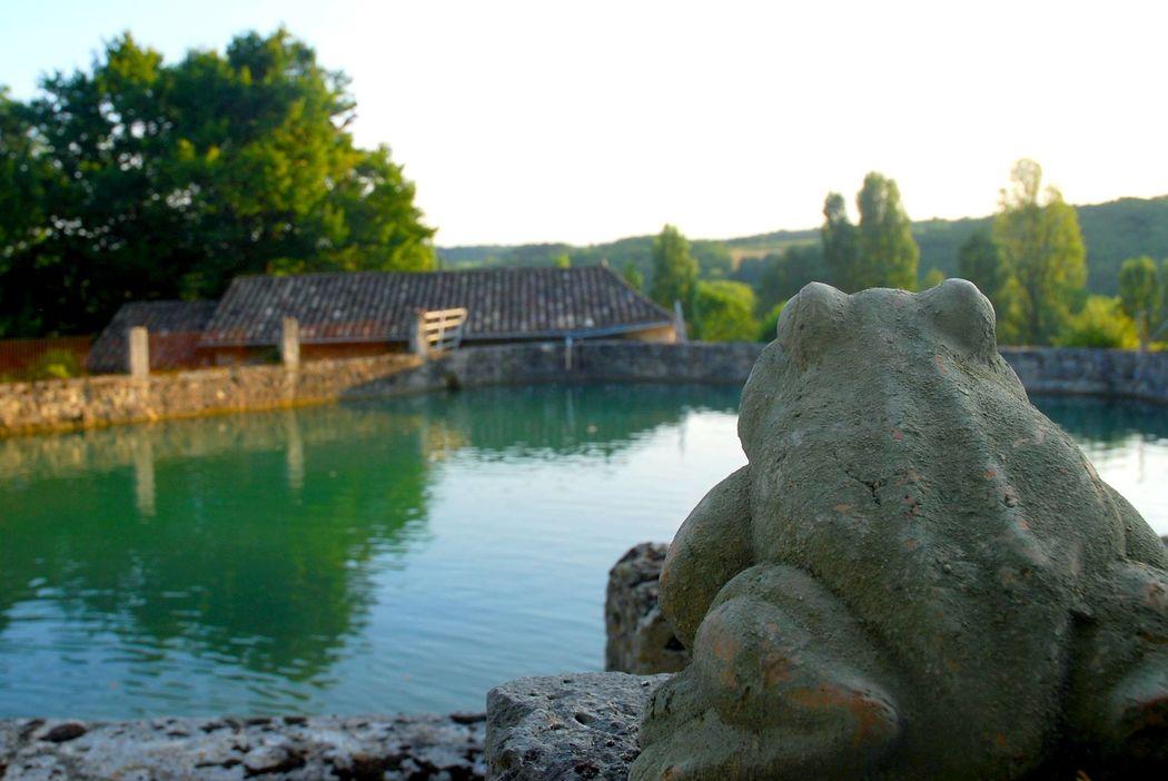La chartreuse du Bignac