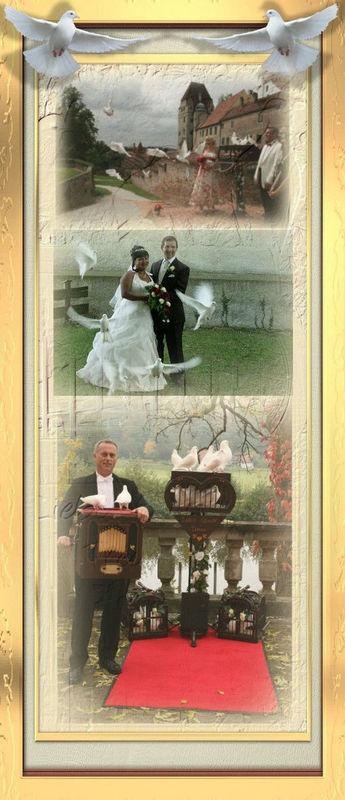 Hochzeitstaubenservice Deubelli