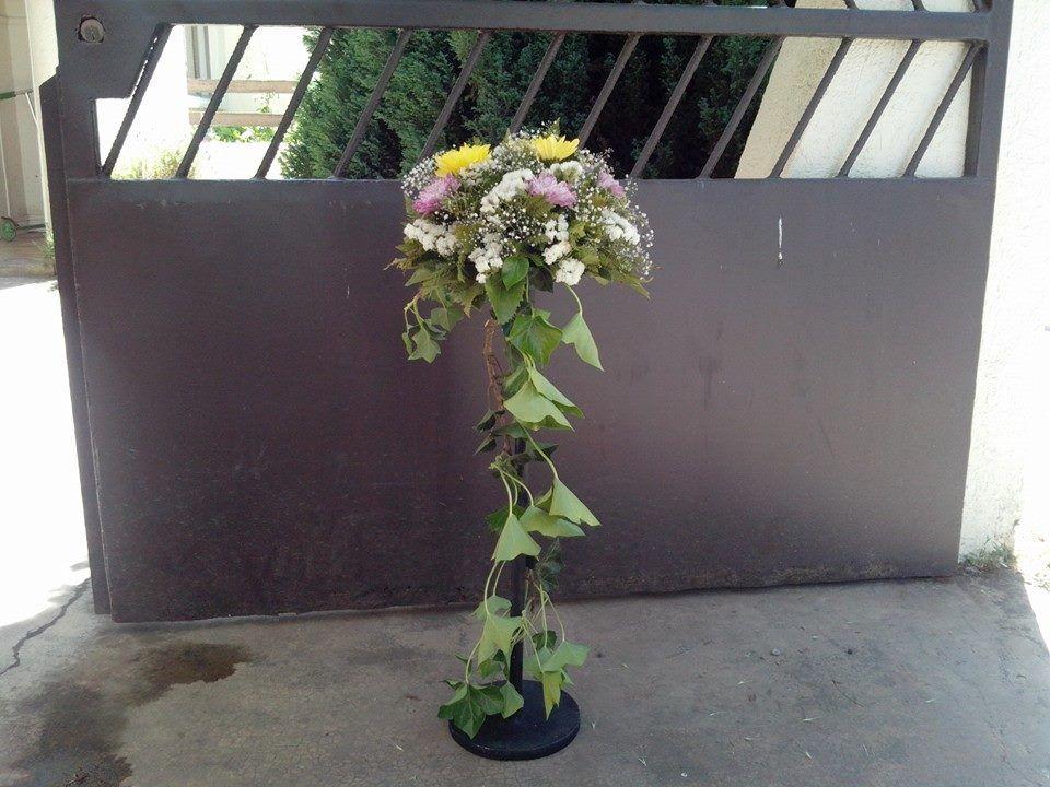 Florería Catalina Chiloe