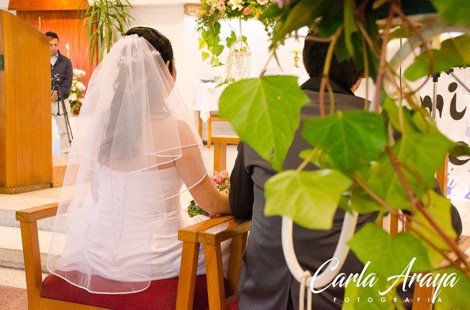Amore Mío Floristería
