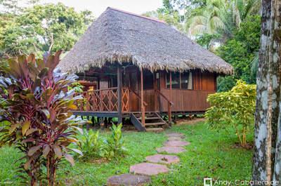 Corto Maltes Amazonía