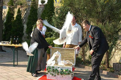 Hochzeitstauben Michaela Kohl