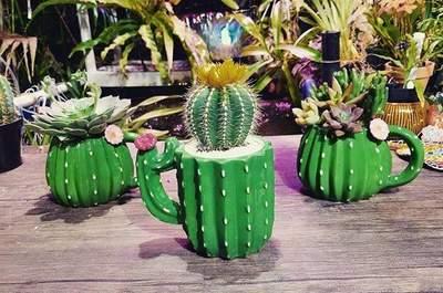 La tienda del cactus