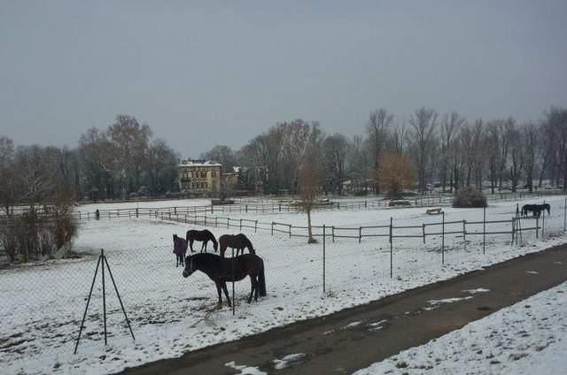 Hofgut Petersau