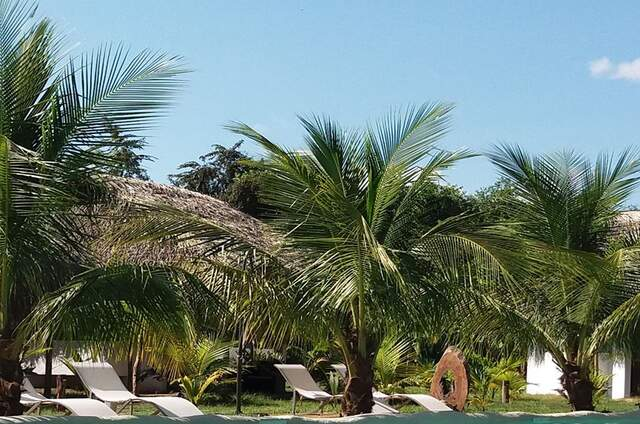 Coconut Tarapoto - Eco Bungalows & Lagoon Pool