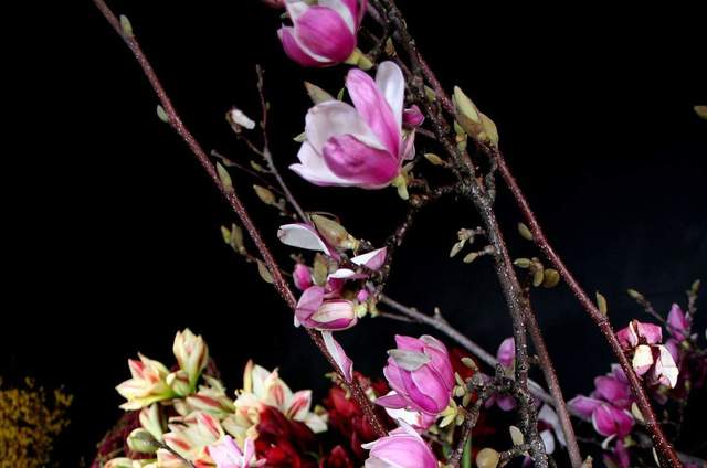 Republica das Flores