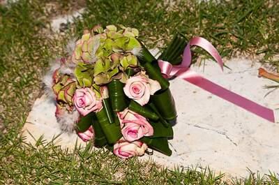 Giardino Fiorito, fiori e foto