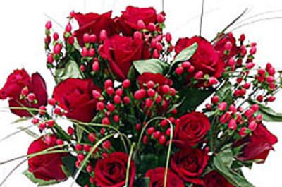 Flores Rainha