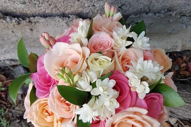 Flores Consentida