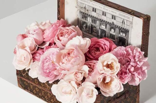 Florista do Forum Viseu