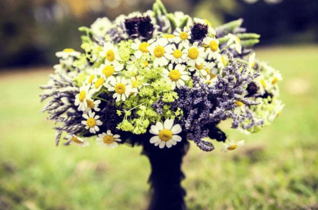 Pracownia florystyczno-artystyczna Magenta