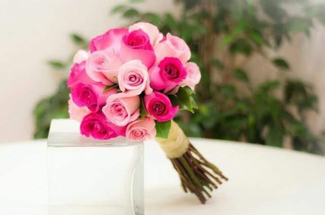 Florería Alegría