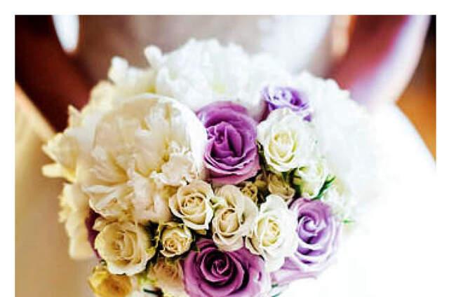 Ohanami - flores & belleza