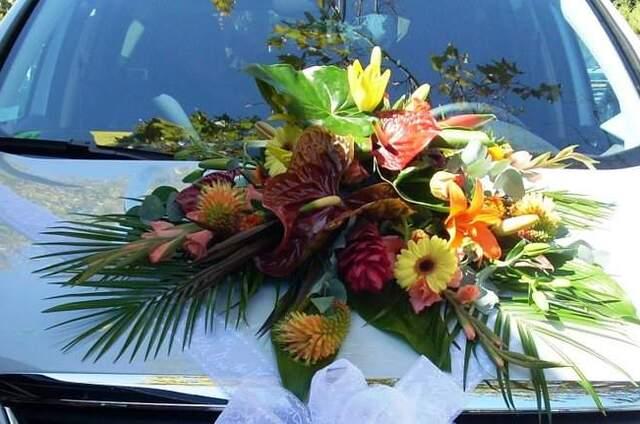Autant de fleurs