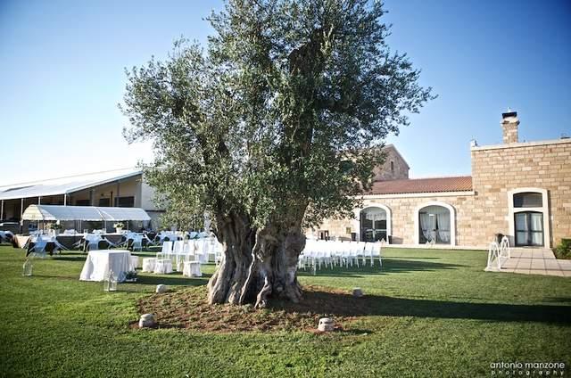 Masseria Stali