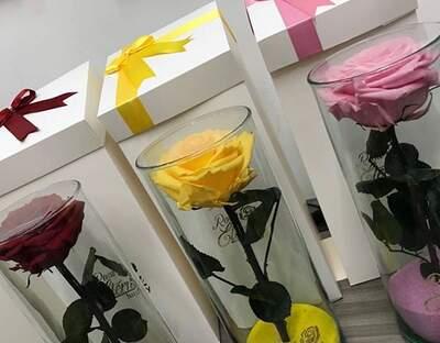 Rosa Eterna Luxury Opiniones Fotos Y Teléfono