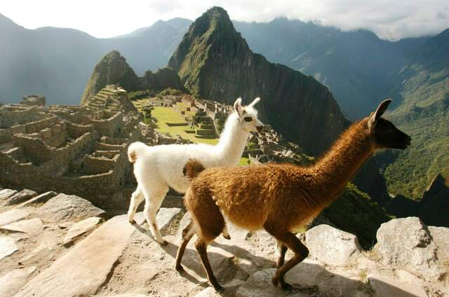 Travel Group Peru
